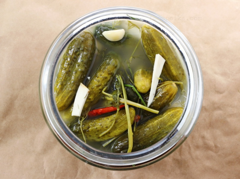 08 28 15 dill pickles (70) FP