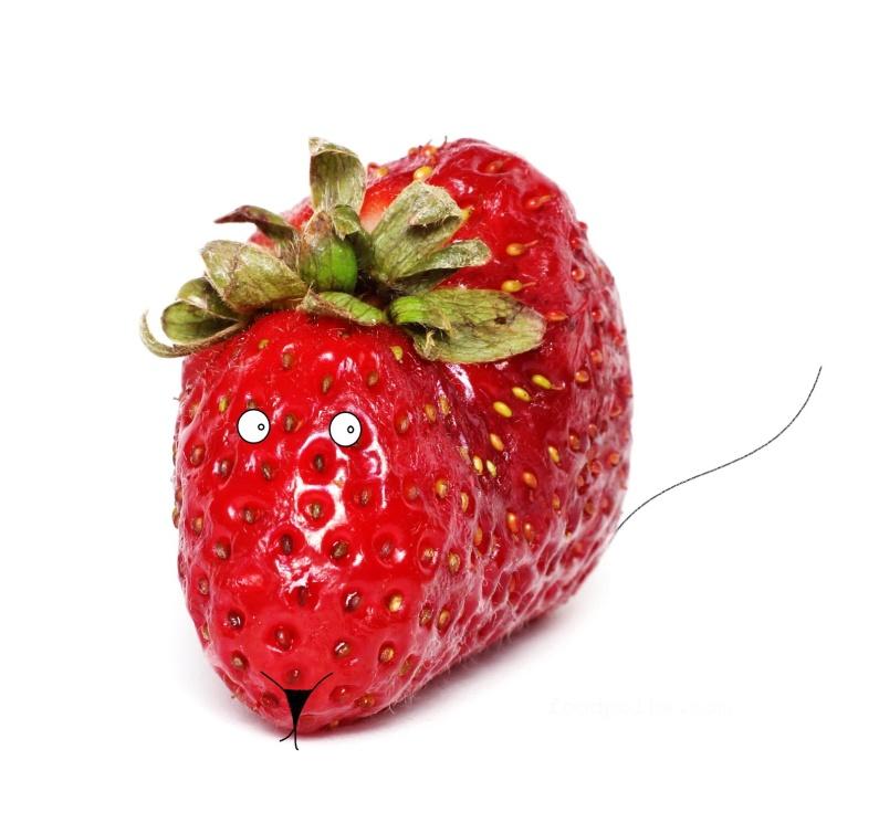 10 05 15 strawbery (17a) FP