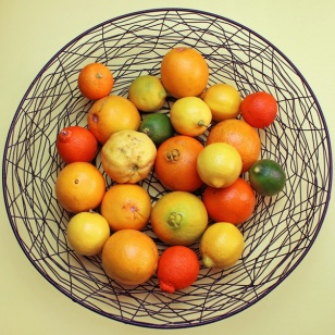 Fifty Shades of Citrus