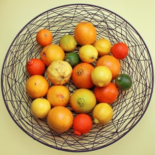 different shades of citrus
