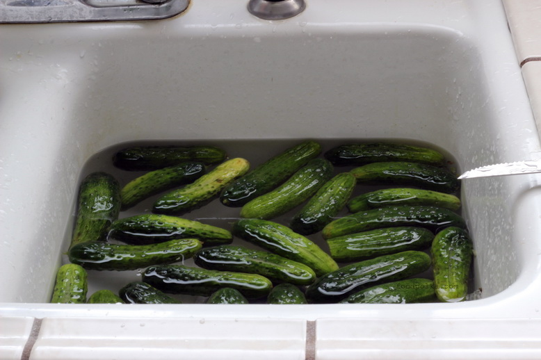 dill pickles before
