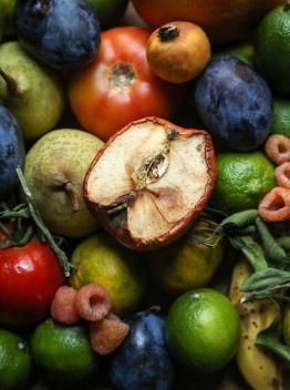 The Forgotten Fruit