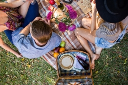 The picnic set